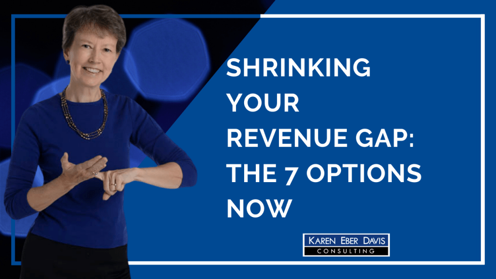 Session # 6: Money: Shrinking Your Revenue Gap, The 7 Options Now